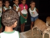 2-pev-leva-alunos-da-escola-maroquinha-petrolina-para-visita-ao-museu-da-fauna-17-06-13