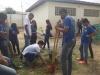 Arborização de escola mobiliza alunos, professores e gestores
