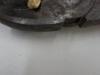 Atividade de produção de mudas - CCA UNIVASF - Petrolina-PE - dias 09.03, 19.03 e 01.04