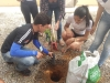 Arborizações de escolas mobilizam alunos, professores e gestores
