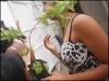 Atividade de arborização - Casa Lar Sementes do Amanhã - 06.12.14 - Petrolina-PE