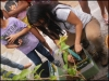 Entrega de grades e arborização no Colégio Ruy, Casa Lar Sementes do Amanhã e Colégio Estadual Padre Luiz Cassiano- 06.12.14 - Juazeiro-BA e Petrolina-PE
