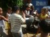Atividade de Horta na Escola Municipal de Educação Infantil Antônio Guilhermino - Juazeiro-BA - 09.05.2014 e 16.05.2014