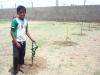 Atividade de Arborização na Escola Maria Soledade Alves, Petrolina-PE - 06.12.13
