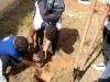 Atividade de Arborização na Escola Zélia Matias - Petrolina-PE - 02.06.2014
