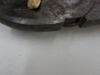 Atividade de produção de mudas - CCA UNIVASF - Petrolina-PE - 01.04.15 e 09.04.15