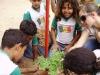 4-alunos-da-escola-walter-gil-utilizam-plantas-nativas-para-arborizar-a-escola-30-04-13