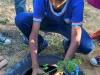 Atividades de Arborização mobilizam escolas