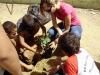 2013 - Atividades de arborização nas escolas