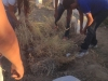 Atividades de arborização e compostagem - Colégio Lomanto Júnior - Juazeiro-BA - 16.06.15