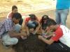 estudantes-preparam-mudas-em-sementeiras-escola-edualdina-damasiojuazeiro-ba-16-10-2012