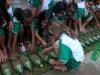 estudantessemeiamplantasmedicinais-escolarubemamorim-petrolina-pe12-11-2012