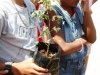 mobilizacao-para-arborizacao-escola-leopoldina-leal-juaziero-ba-21-09