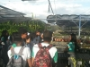 Escolas mobilizadas pelo PEV realizam visitas técnicas