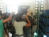 Visita técnica ao CRAD - Escola Municipal Nicolau Boscardin - Petrolina-PE - 20.05.15