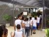 7-alunos-da-escola-judite-leal-juazeiro-visitam-viveiro-do-crad-atraves-do-pev-16-05-13