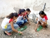 3-alunas-da-escola-bolivar-santanna-juazeiro-mobilizadas-pelo-pev-iniciam-a-construcao-da-horta-vertical-maio-2013