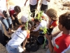 atividade-de-arborizacao-na-escola-carmem-costa-bairro-alto-da-alianca-juazeiro-ba-20-09-2013--5