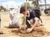 atividade-de-arborizacao-na-escola-nossa-senhora-rainha-dos-anjos-caic-bairro-cohab-iv-petrolina-pe-30-09-2013-8