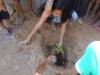 atividade-de-arborizacao-na-escola-prof-luiza-de-castro-ferreira-e-silva-bairro-jardim-sao-paulo-petrolina-pe-04-10-2013-6