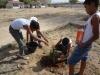 atividade-de-arborizacao-no-centro-social-urbano-juazeiro-ba-08-10-2013-10