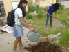 Prática de Compostagem na Escola Normal Estadual Edivaldo Machado Boaventura - Juazeiro-BA - 30.05.2014