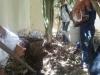 Mutirão de limpeza - Compostagem - Colégio Ruy Barbosa