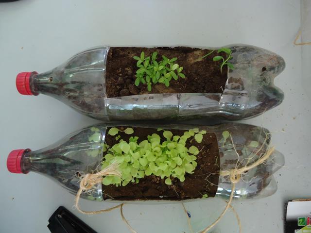 Alunos aprendem a fazer jardineiras com pets recicladas8 - Escola Anete Rolim - Petrolina-PE (18-10-2012)