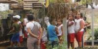 Alunos e professores visitam Viveiro de mudas - CRAD-UNIVASF -Escola Iracema Pereira da Paixao - Juazeiro-BA (18-10-2012)