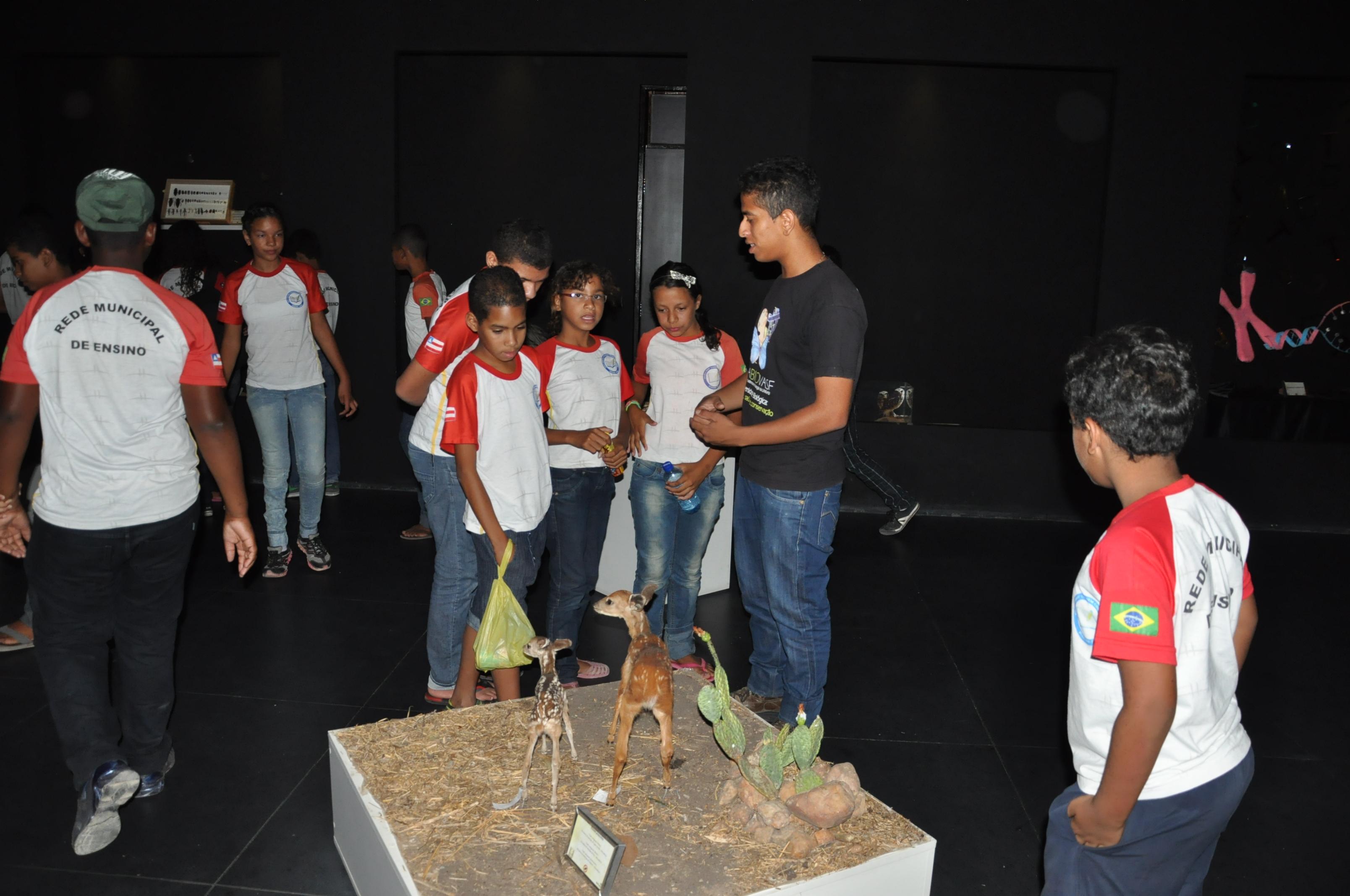 Visita ao CEMAFAUNA pela Escola Municipal Professora Carmem Costa Santos, Juazeiro-BA - 29.10.13