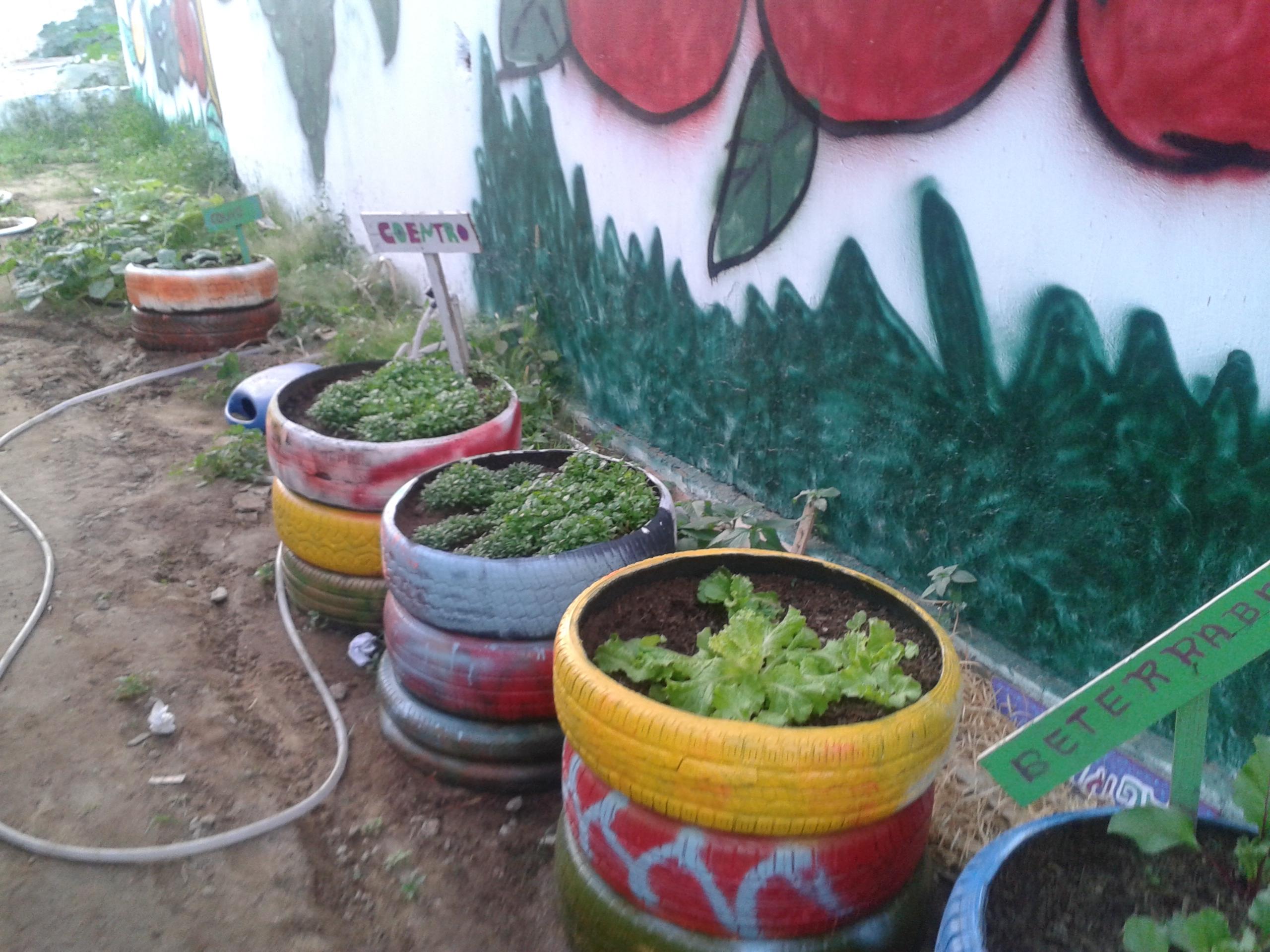Horta da Escola Jacob Ferreira, Petrolina-PE