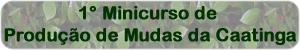 1minicursomudas