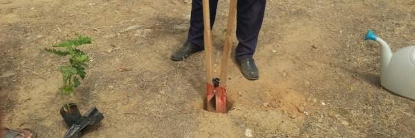 Atividade de arborização da orla de Juazeiro - Projeto Escola Verde - Juazeiro-BA - 26.06.15